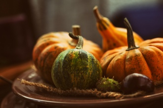 Prayer, God's Provision and Thanksgiving Day